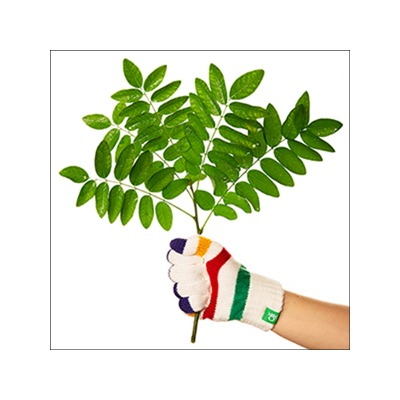 Campagna foto e video Benetton per Treedom